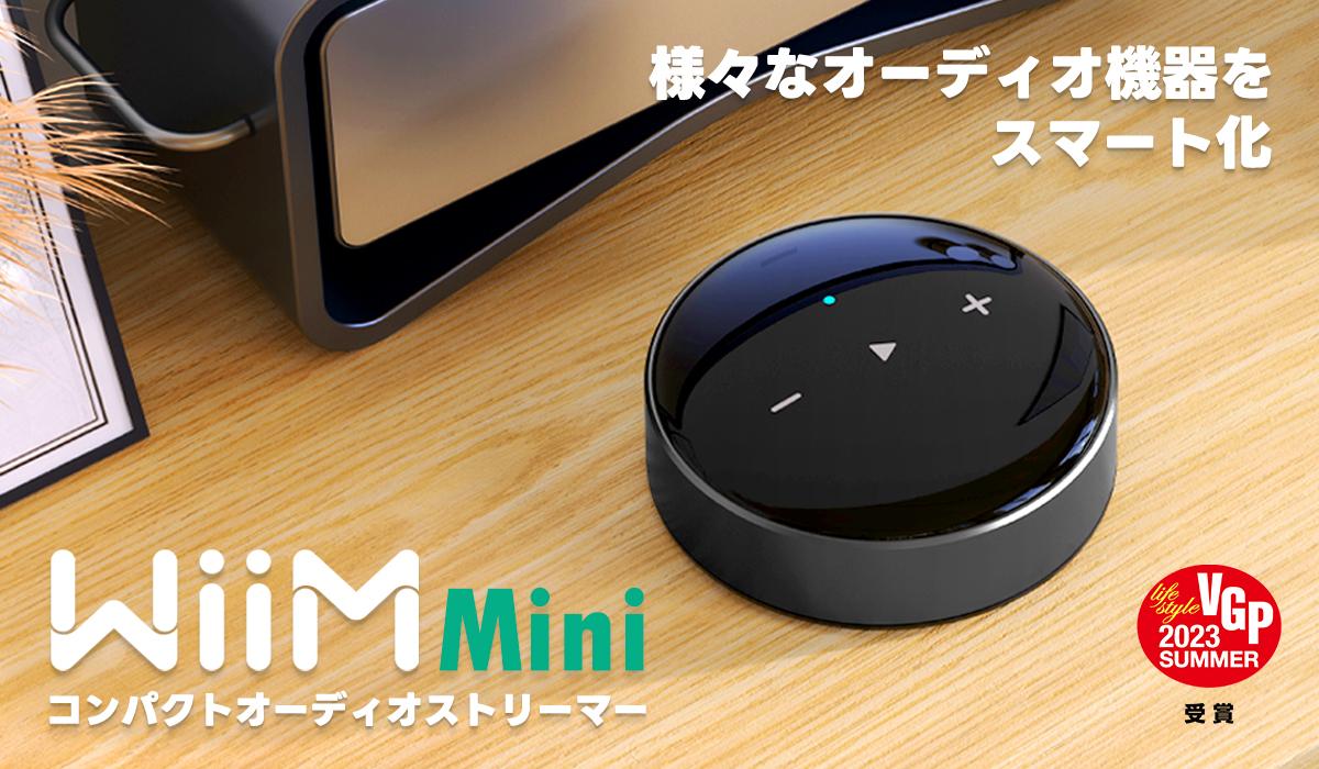 iBasso Audio IT01X