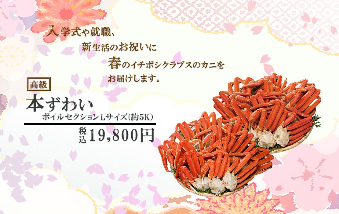 高級本ズワイガニ 大型サイズ7尾[4.5kg] 14,800円(税込)
