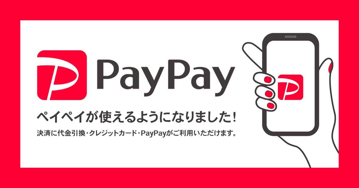 Nuts world