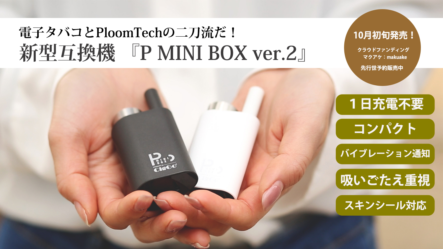 P MINI BOX PloomTech互換バッテリー